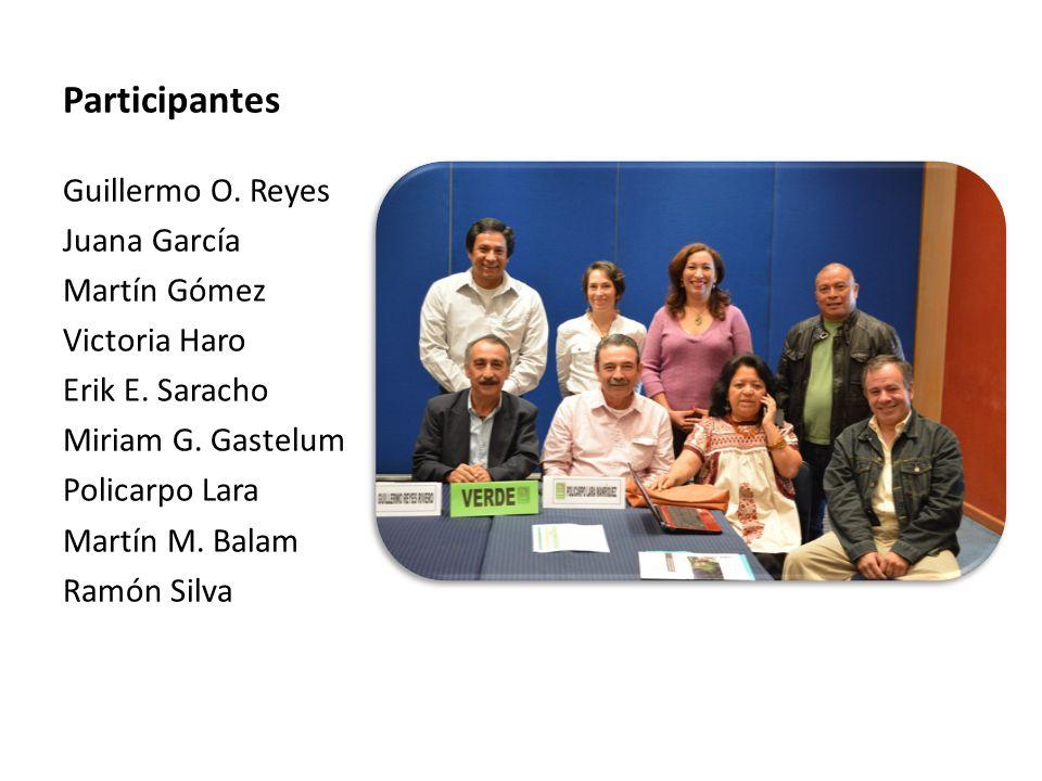 Participantes Guillermo O. Reyes Juana García Martín Gómez Victoria Haro Erik E. Saracho Miriam G. Gastelum Policarpo Lara Martín M. Balam Ramón Silva