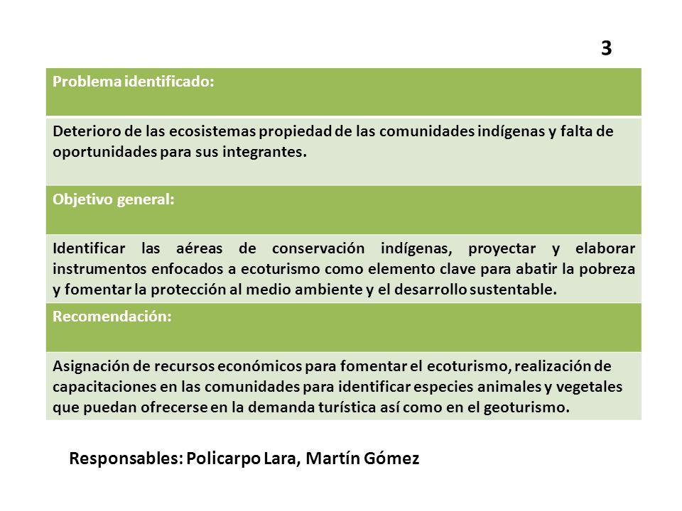 Problema identificado: Deterioro de las ecosistemas propiedad de las comunidades indígenas y falta de oportunidades para sus integrantes. Objetivo gen