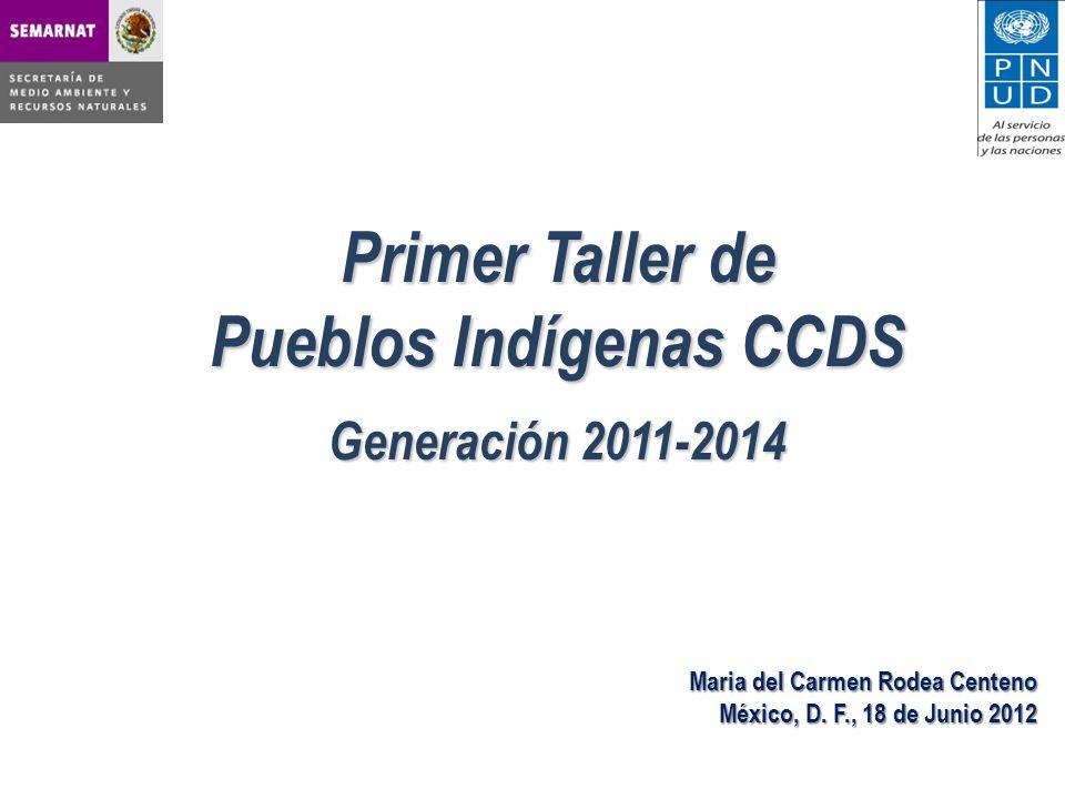 Primer Taller de Pueblos Indígenas CCDS Generación 2011-2014 Maria del Carmen Rodea Centeno México, D.