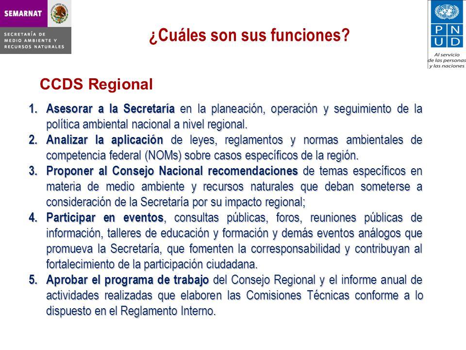 CCDS Regional ¿Cuáles son sus funciones.1.