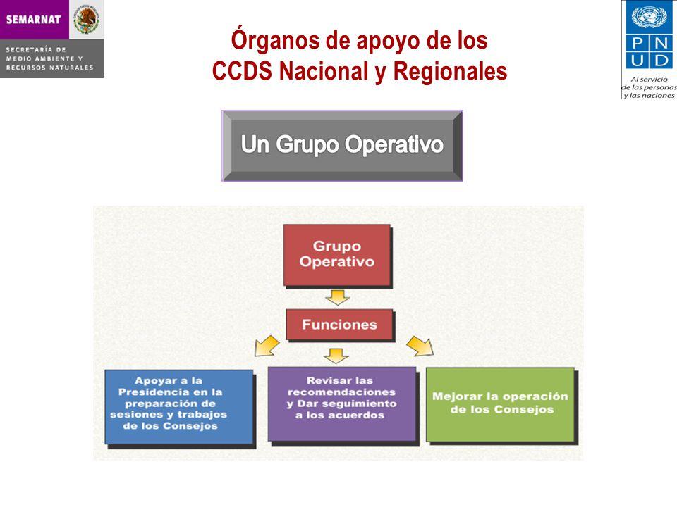 Órganos de apoyo de los CCDS Nacional y Regionales