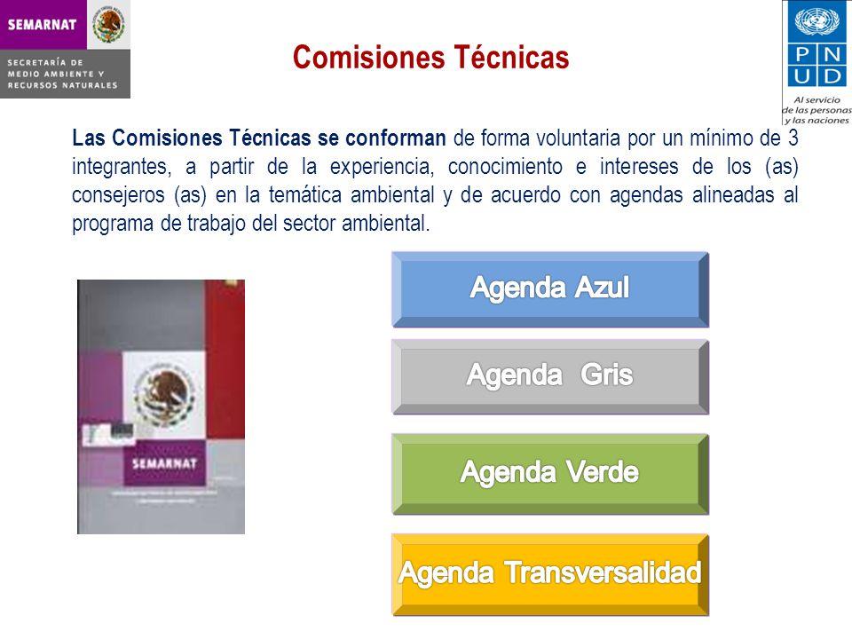 Las Comisiones Técnicas se conforman de forma voluntaria por un mínimo de 3 integrantes, a partir de la experiencia, conocimiento e intereses de los (as) consejeros (as) en la temática ambiental y de acuerdo con agendas alineadas al programa de trabajo del sector ambiental.