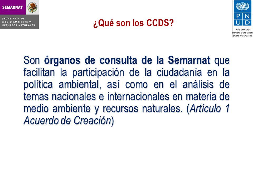 Son órganos de consulta de la Semarnat que facilitan la participación de la ciudadanía en la política ambiental, así como en el análisis de temas nacionales e internacionales en materia de medio ambiente y recursos naturales.