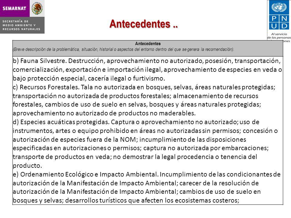 Antecedentes (Breve descripción de la problemática, situación, historial o aspectos del entorno dentro del que se genera la recomendación).
