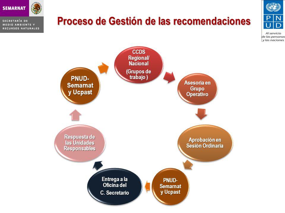 CCDS Regional/ Nacional (Grupos de trabajo ) Asesoría en Grupo Operativo Aprobación en Sesión Ordinaria PNUD- Semarnat y Ucpast Entrega a la Oficina del C.