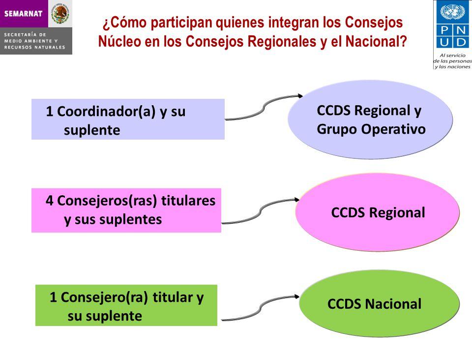 ¿Cómo participan quienes integran los Consejos Núcleo en los Consejos Regionales y el Nacional.