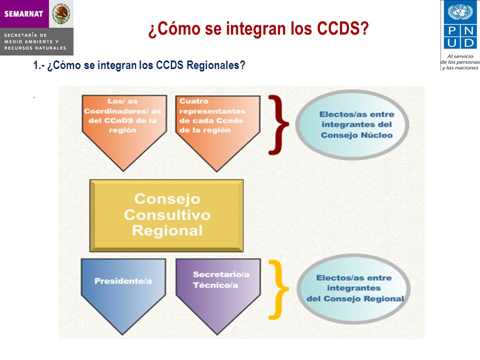 ¿Cómo se integran los CCDS? 1.- ¿Cómo se integran los CCDS Regionales?.