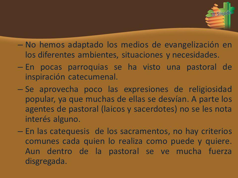 – No hemos adaptado los medios de evangelización en los diferentes ambientes, situaciones y necesidades. – En pocas parroquias se ha visto una pastora