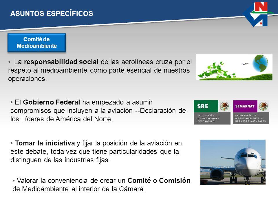 ASUNTOS ESPECÍFICOS La responsabilidad social de las aerolíneas cruza por el respeto al medioambiente como parte esencial de nuestras operaciones. Com