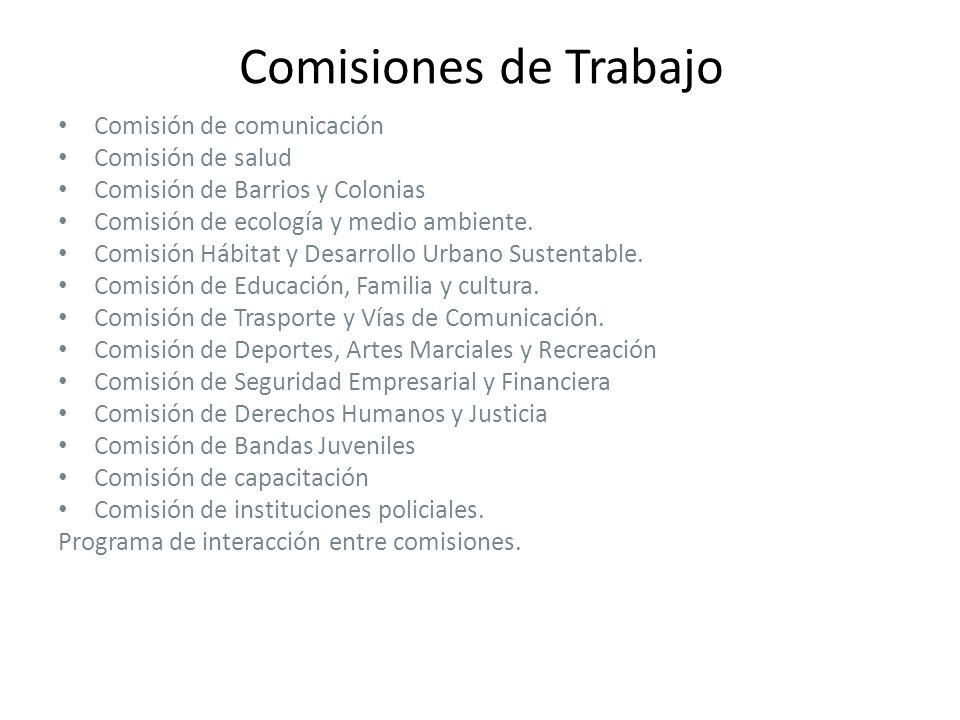 Comisiones de Trabajo Comisión de comunicación Comisión de salud Comisión de Barrios y Colonias Comisión de ecología y medio ambiente.