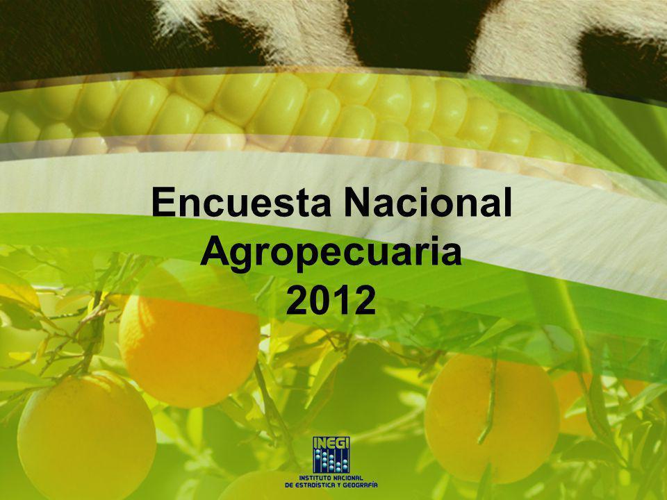 Cultivos que mayor incremento de superficie cosechada tuvieron de 2007 a 2012, en términos porcentuales
