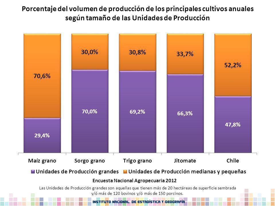 Las Unidades de Producción grandes son aquellas que tienen más de 20 hectáreas de superficie sembrada y/ó más de 120 bovinos y/ó más de 150 porcinos.