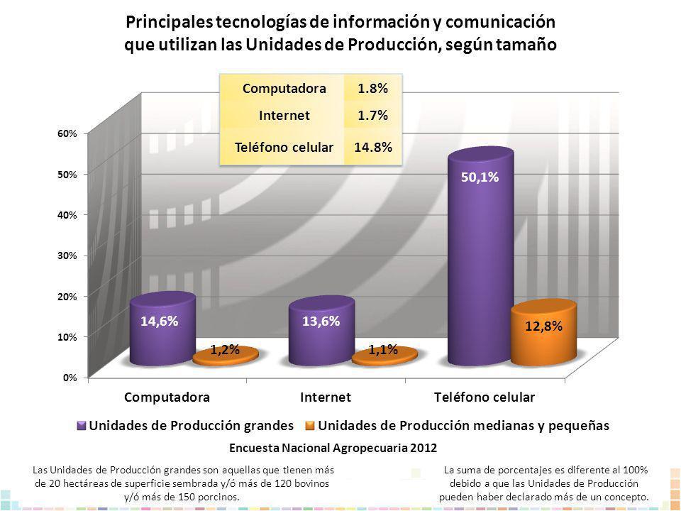 Principales tecnologías de información y comunicación que utilizan las Unidades de Producción, según tamaño La suma de porcentajes es diferente al 100