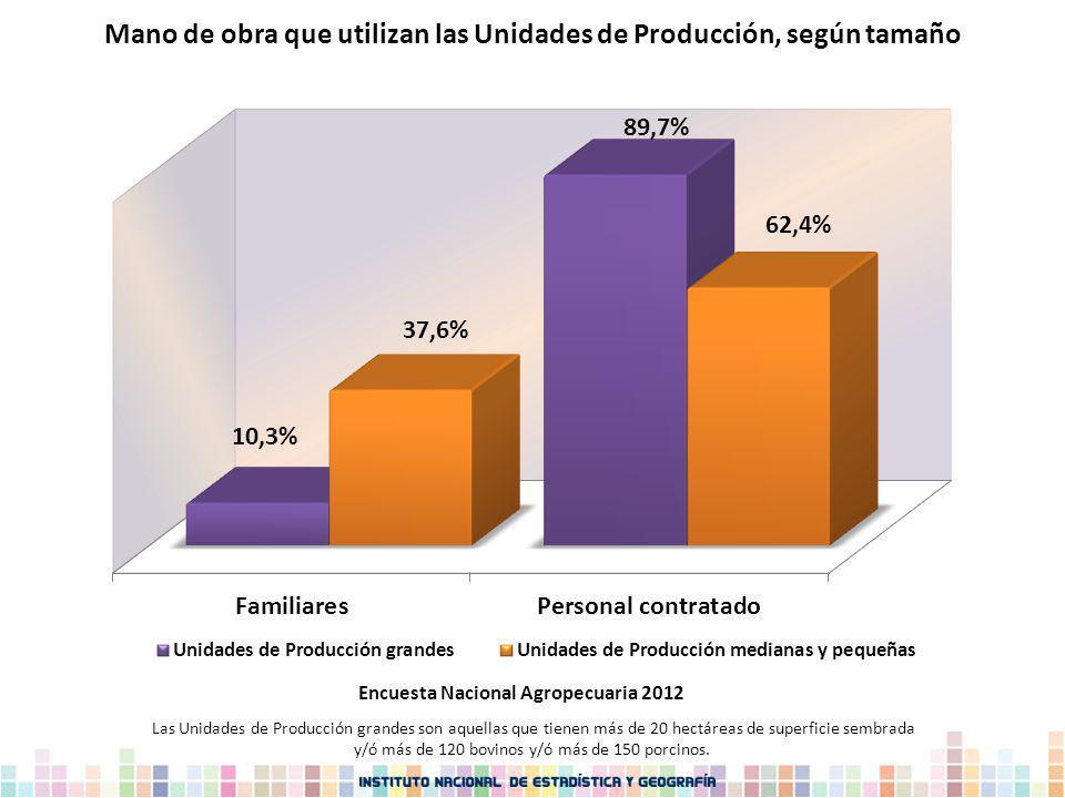 Mano de obra que utilizan las Unidades de Producción, según tamaño Las Unidades de Producción grandes son aquellas que tienen más de 20 hectáreas de s