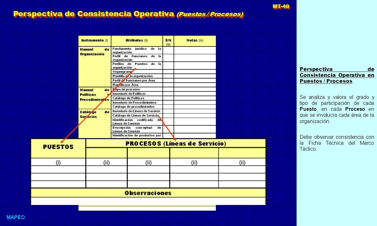 Perspectiva de Consistencia Operativa en Puestos / Procesos Se analiza y valora el grado y tipo de participación de cada Puesto, en cada Proceso en que se involucra cada área de la organización.