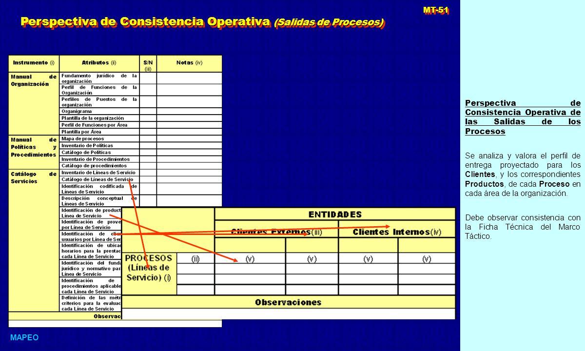 Perspectiva de Consistencia Operativa de las Salidas de los Procesos Se analiza y valora el perfil de entrega proyectado para los Clientes, y los correspondientes Productos, de cada Proceso en cada área de la organización.