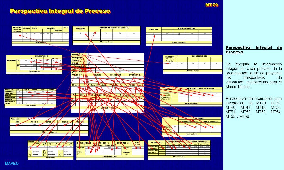 Perspectiva Integral de Proceso Se recopila la información integral de cada proceso de la organización, a fin de proyectar las perspectivas de valoración establecidas para el Marco Táctico.