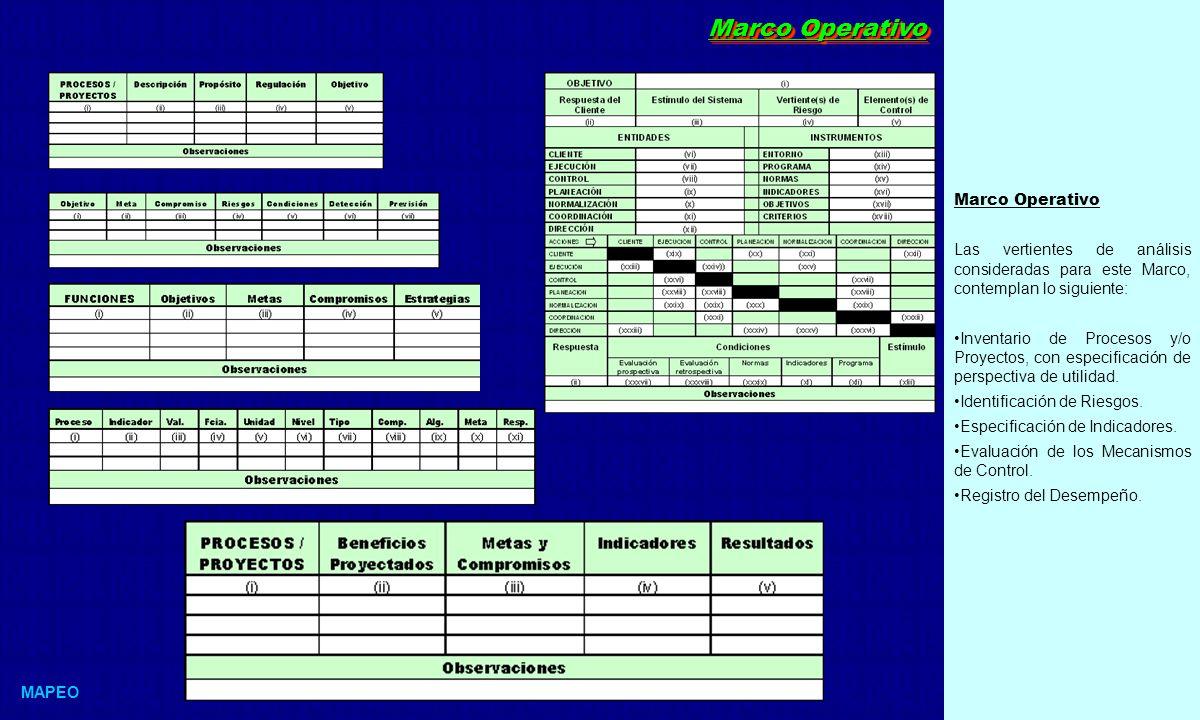 Marco Operativo Las vertientes de análisis consideradas para este Marco, contemplan lo siguiente: Inventario de Procesos y/o Proyectos, con especificación de perspectiva de utilidad.