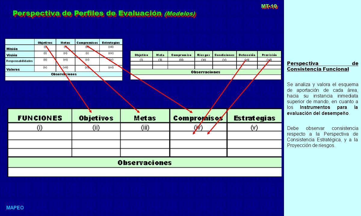 Perspectiva de Consistencia Funcional Se analiza y valora el esquema de aportación de cada área, hacia su instancia inmediata superior de mando, en cuanto a los Instrumentos para la evaluación del desempeño.