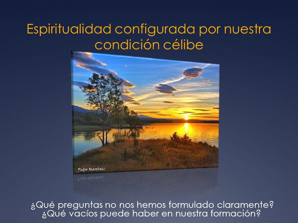 Espiritualidad configurada por nuestra condición célibe ¿Qué preguntas no nos hemos formulado claramente.