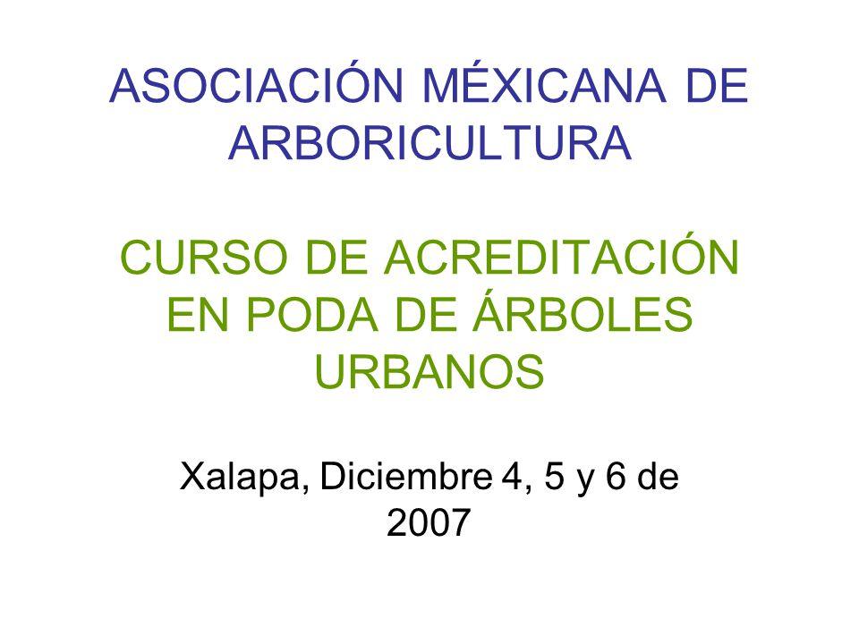 ASOCIACIÓN MÉXICANA DE ARBORICULTURA CURSO DE ACREDITACIÓN EN PODA DE ÁRBOLES URBANOS Xalapa, Diciembre 4, 5 y 6 de 2007