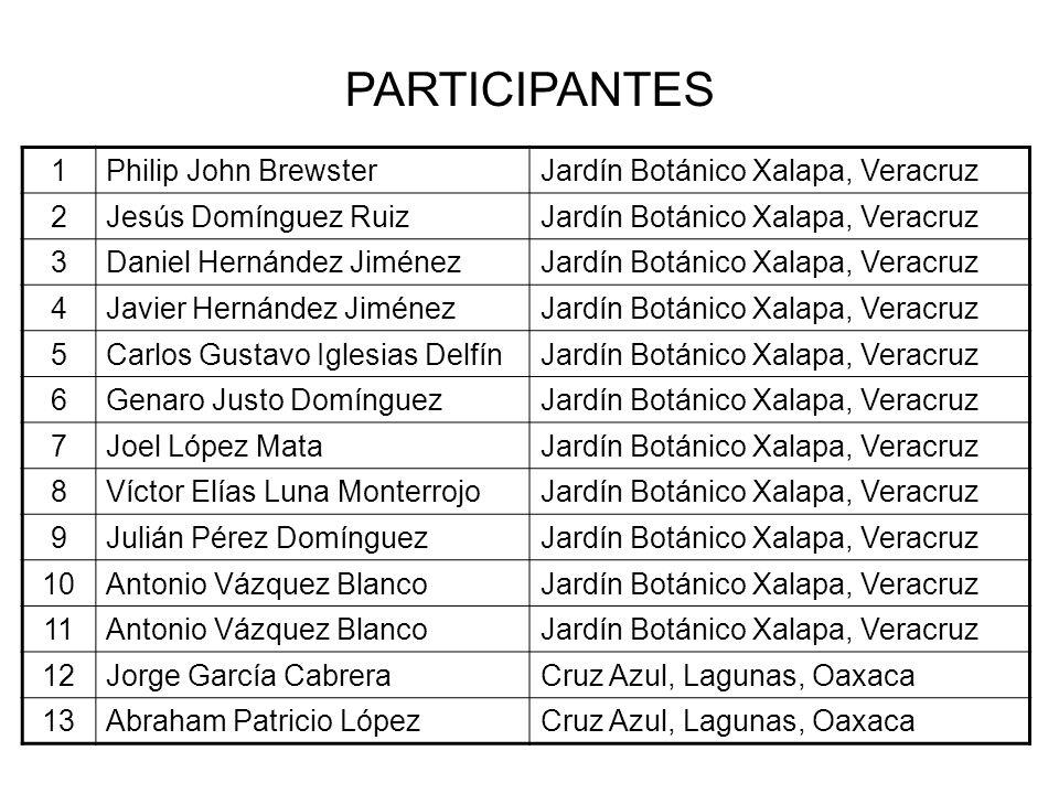 1Philip John BrewsterJardín Botánico Xalapa, Veracruz 2Jesús Domínguez RuizJardín Botánico Xalapa, Veracruz 3Daniel Hernández JiménezJardín Botánico X