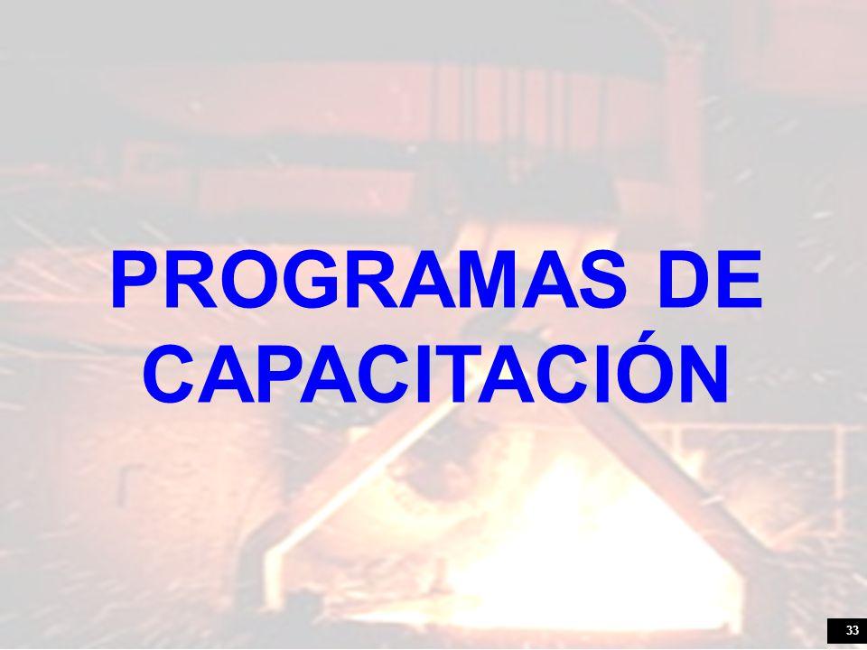 33 PROGRAMAS DE CAPACITACIÓN