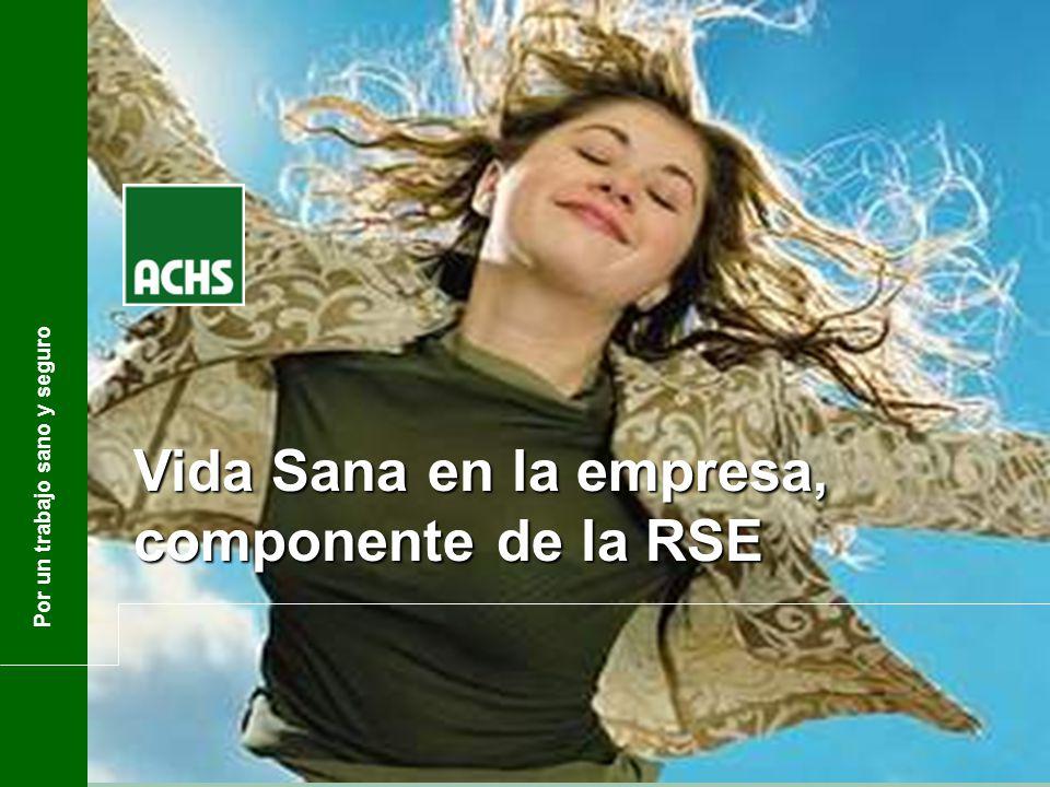 Bárbara Délano Directora Relaciones Institucionales Gerencia Asuntos Corporativos Por un trabajo sano y seguro Vida Sana en la empresa, componente de