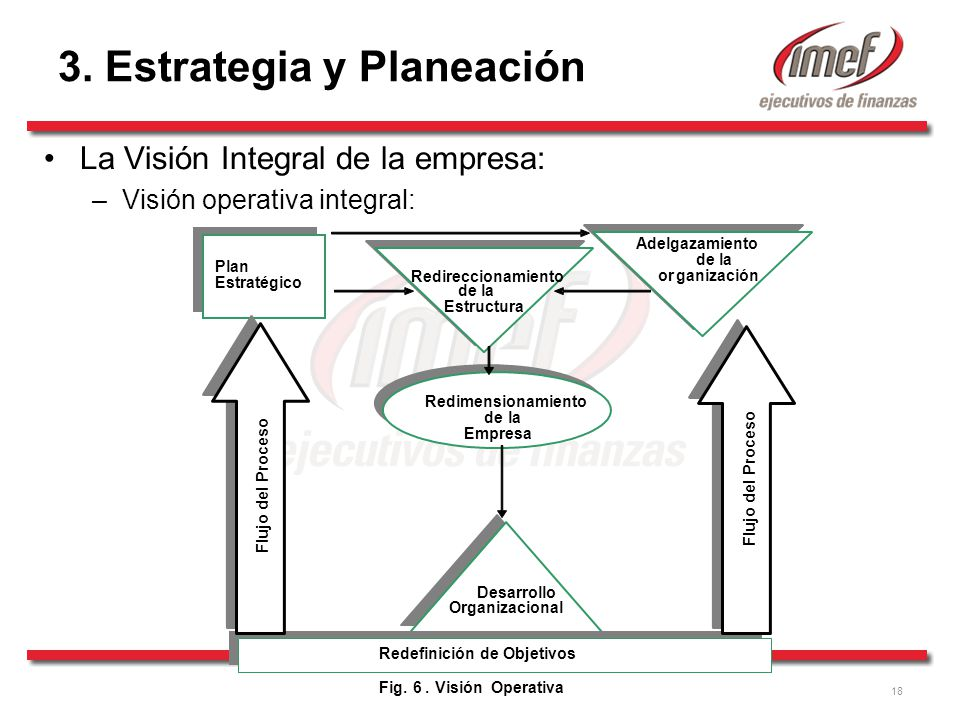 18 Adelgazamiento de la Redireccionamiento organización de la Estructura Redimensionamiento de la Empresa Desarrollo Organizacional Fig.
