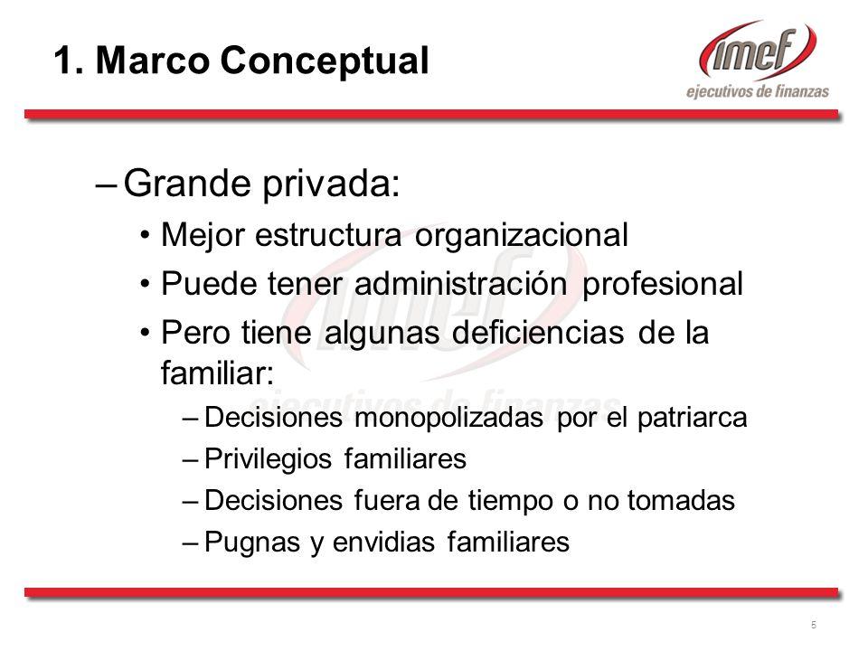 5 1. Marco Conceptual –Grande privada: Mejor estructura organizacional Puede tener administración profesional Pero tiene algunas deficiencias de la fa