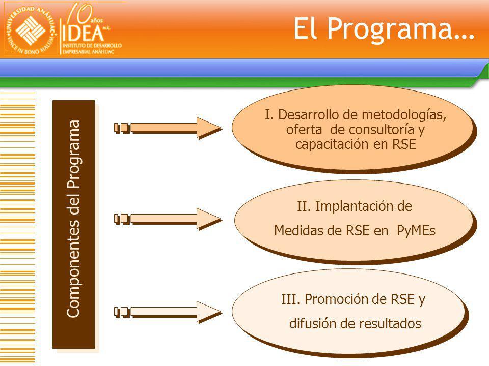 Componentes del Programa I. Desarrollo de metodologías, oferta de consultoría y capacitación en RSE II. Implantación de Medidas de RSE en PyMEs III. P