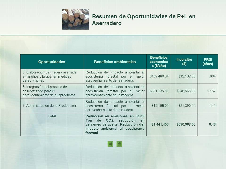 OportunidadesBeneficios ambientales Beneficios económico s ($/año) Inversión ($) PRSI (años) 5. Elaboración de madera aserrada en anchos y largos, en
