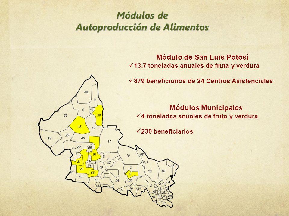 Módulo de San Luis Potosí 13.7 toneladas anuales de fruta y verdura 879 beneficiarios de 24 Centros Asistenciales Módulos Municipales 4 toneladas anua