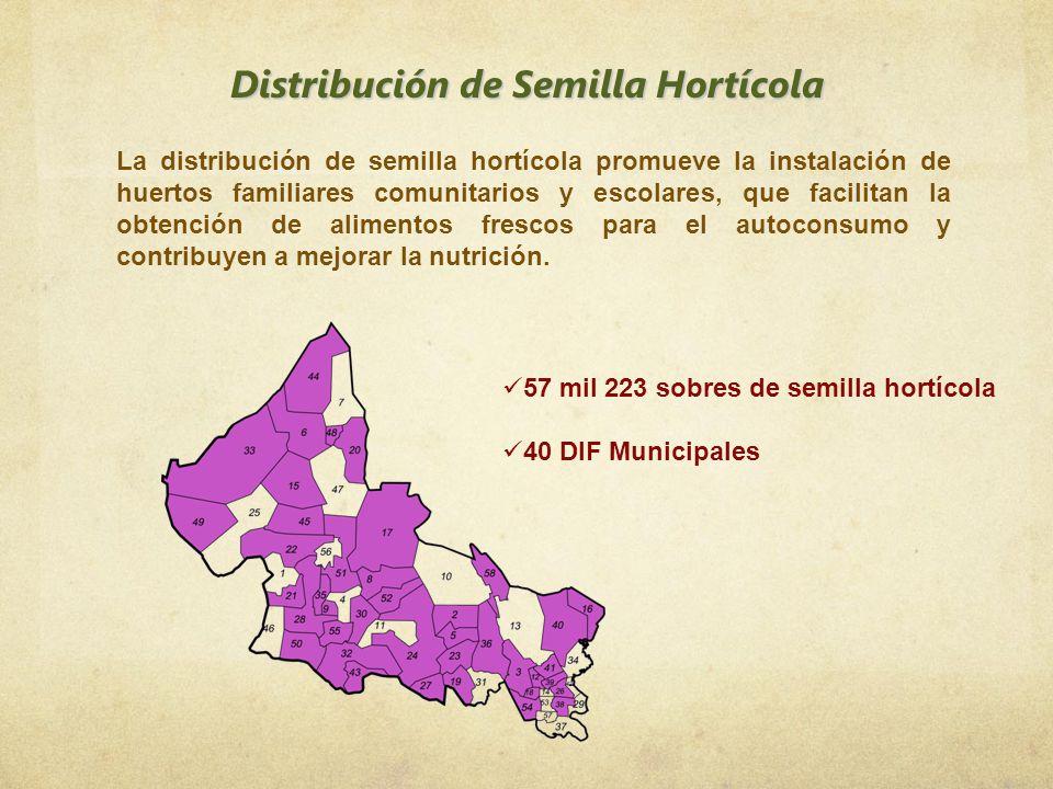 Distribución de Semilla Hortícola La distribución de semilla hortícola promueve la instalación de huertos familiares comunitarios y escolares, que fac
