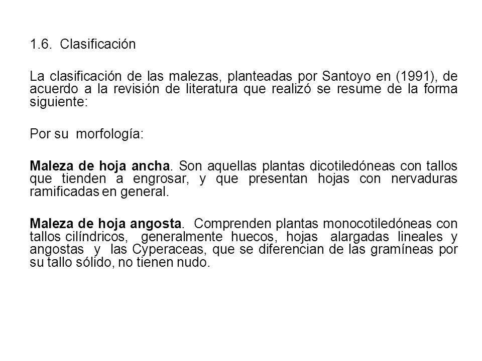 1.6. Clasificación La clasificación de las malezas, planteadas por Santoyo en (1991), de acuerdo a la revisión de literatura que realizó se resume de