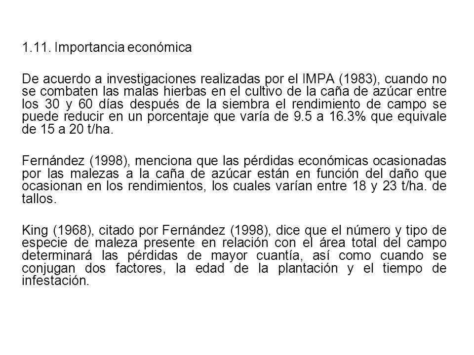 1.11. Importancia económica De acuerdo a investigaciones realizadas por el IMPA (1983), cuando no se combaten las malas hierbas en el cultivo de la ca
