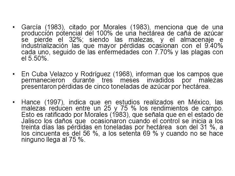 García (1983), citado por Morales (1983), menciona que de una producción potencial del 100% de una hectárea de caña de azúcar se pierde el 32%; siendo
