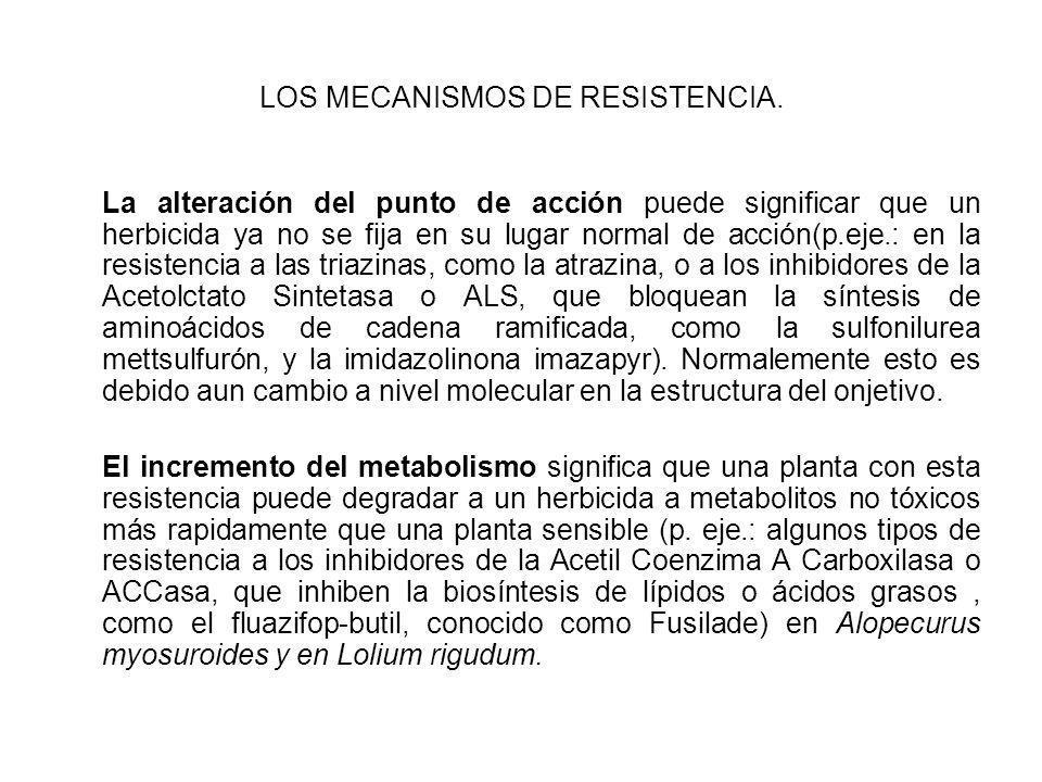LOS MECANISMOS DE RESISTENCIA. La alteración del punto de acción puede significar que un herbicida ya no se fija en su lugar normal de acción(p.eje.: