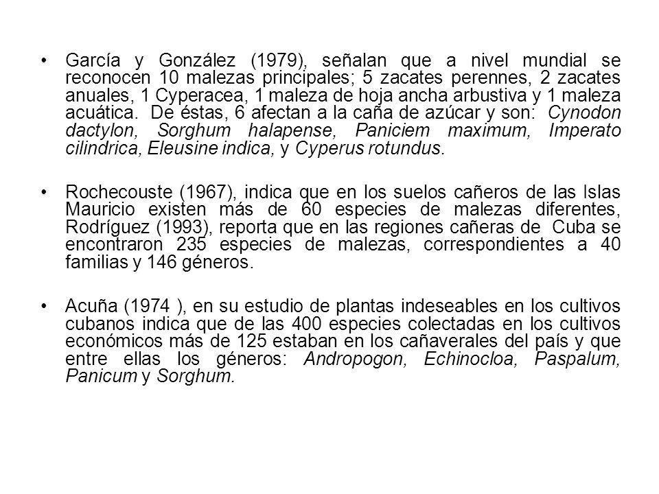 García y González (1979), señalan que a nivel mundial se reconocen 10 malezas principales; 5 zacates perennes, 2 zacates anuales, 1 Cyperacea, 1 malez