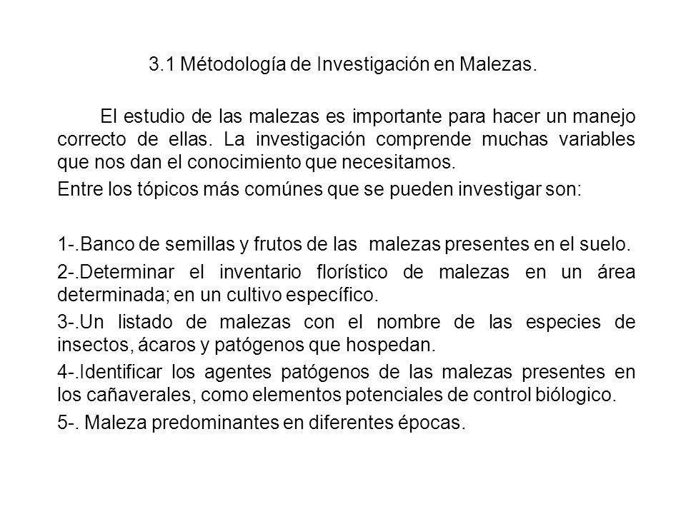 3.1 Métodología de Investigación en Malezas. El estudio de las malezas es importante para hacer un manejo correcto de ellas. La investigación comprend