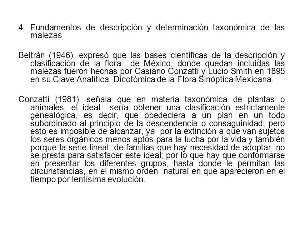 4. Fundamentos de descripción y determinación taxonómica de las malezas Beltrán (1946), expresó que las bases científicas de la descripción y clasific