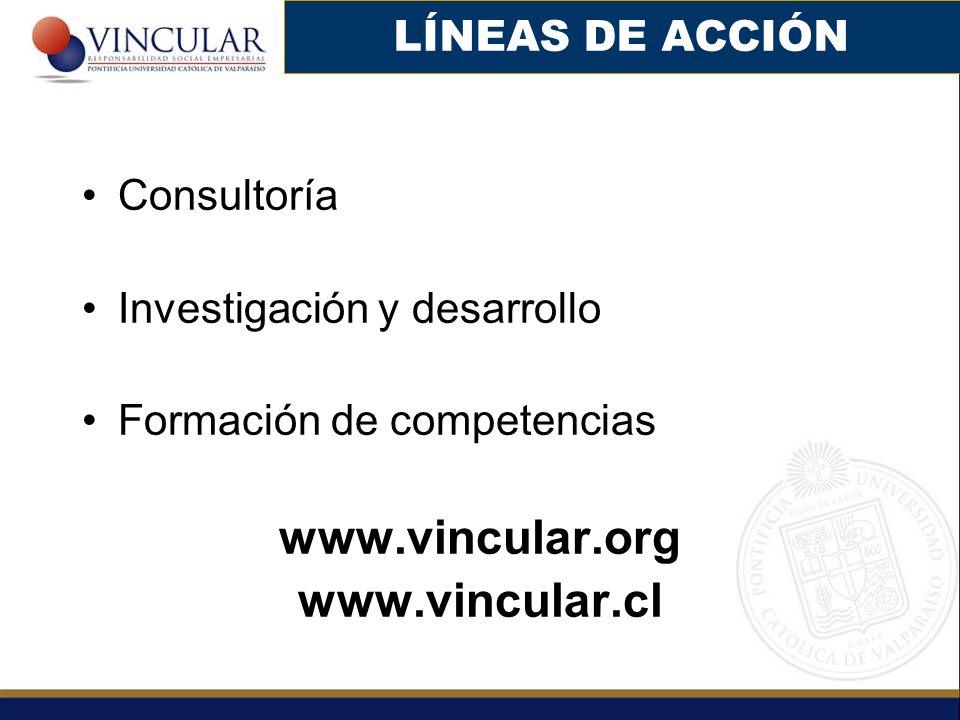 Consultoría Investigación y desarrollo Formación de competencias www.vincular.org www.vincular.cl