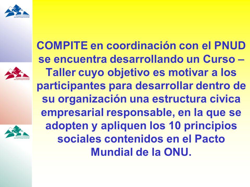 COMPITE en coordinación con el PNUD se encuentra desarrollando un Curso – Taller cuyo objetivo es motivar a los participantes para desarrollar dentro