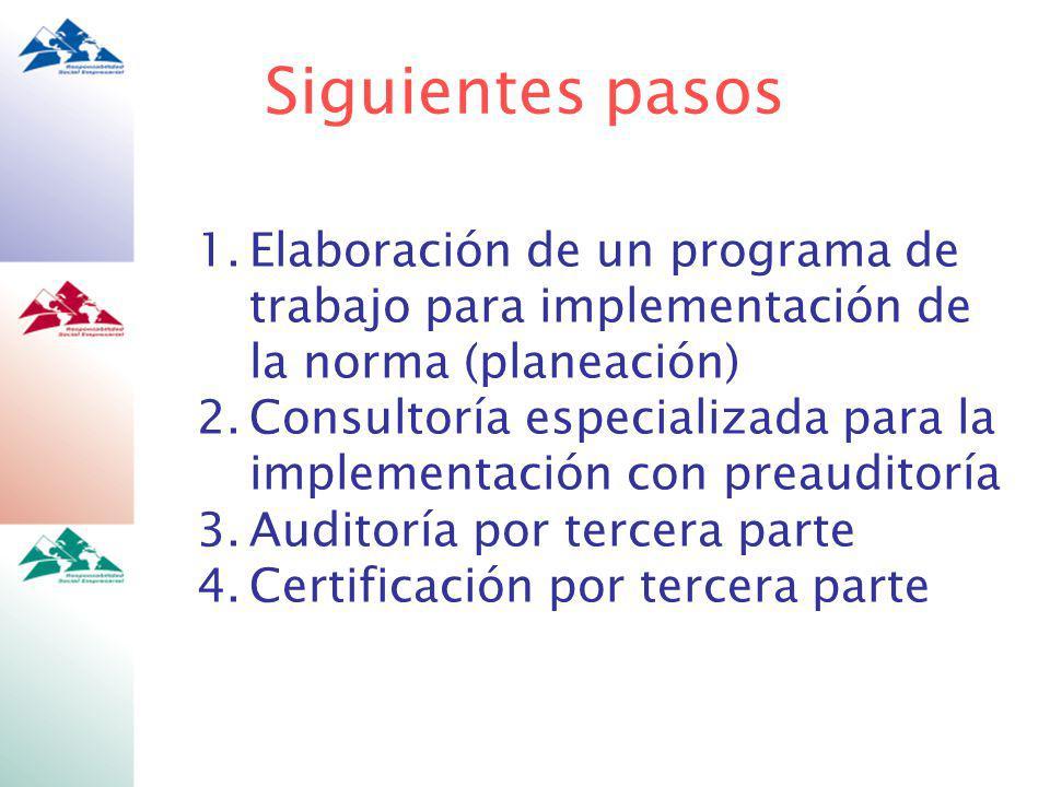 1.Elaboración de un programa de trabajo para implementación de la norma (planeación) 2.Consultoría especializada para la implementación con preauditoría 3.Auditoría por tercera parte 4.Certificación por tercera parte Siguientes pasos