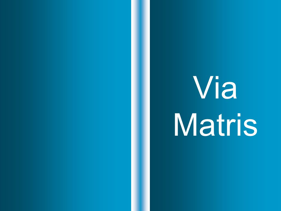 Via Matris