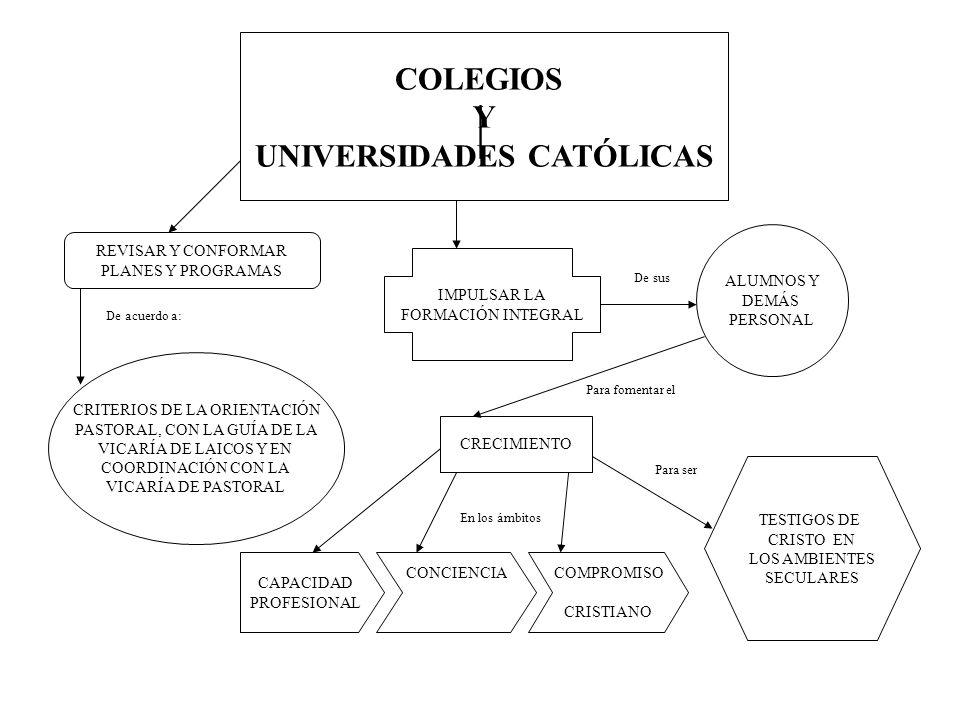 COLEGIOS Y UNIVERSIDADES CATÓLICAS REVISAR Y CONFORMAR PLANES Y PROGRAMAS CRITERIOS DE LA ORIENTACIÓN PASTORAL, CON LA GUÍA DE LA VICARÍA DE LAICOS Y