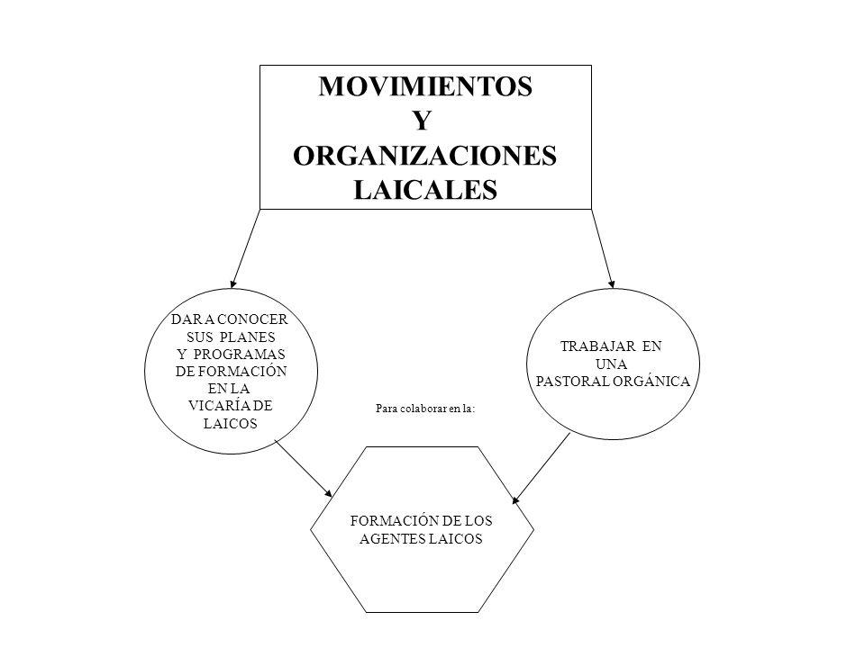 MOVIMIENTOS Y ORGANIZACIONES LAICALES DAR A CONOCER SUS PLANES Y PROGRAMAS DE FORMACIÓN EN LA VICARÍA DE LAICOS TRABAJAR EN UNA PASTORAL ORGÁNICA FORM