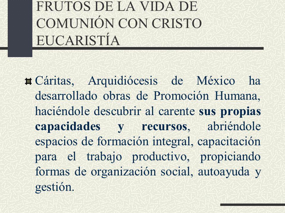FRUTOS DE LA VIDA DE COMUNIÓN CON CRISTO EUCARISTÍA Cáritas, Arquidiócesis de México ha desarrollado obras de Promoción Humana, haciéndole descubrir a