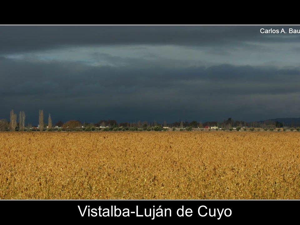 Carlos A. Bau Paramillos-Villavicencio-Las Heras