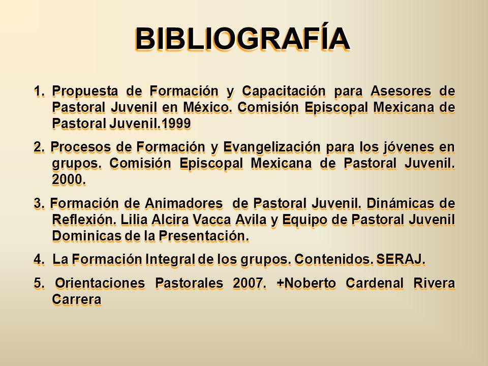 BIBLIOGRAFÍABIBLIOGRAFÍA 1.Propuesta de Formación y Capacitación para Asesores de Pastoral Juvenil en México. Comisión Episcopal Mexicana de Pastoral